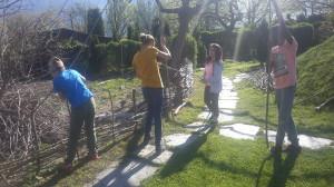Sekundarias im Kränzelgarten beim Zaun machen